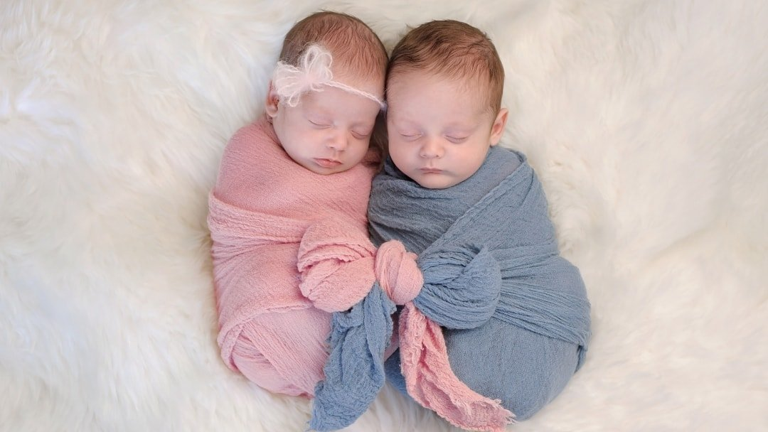 Twin Babies - Types of Twins Article