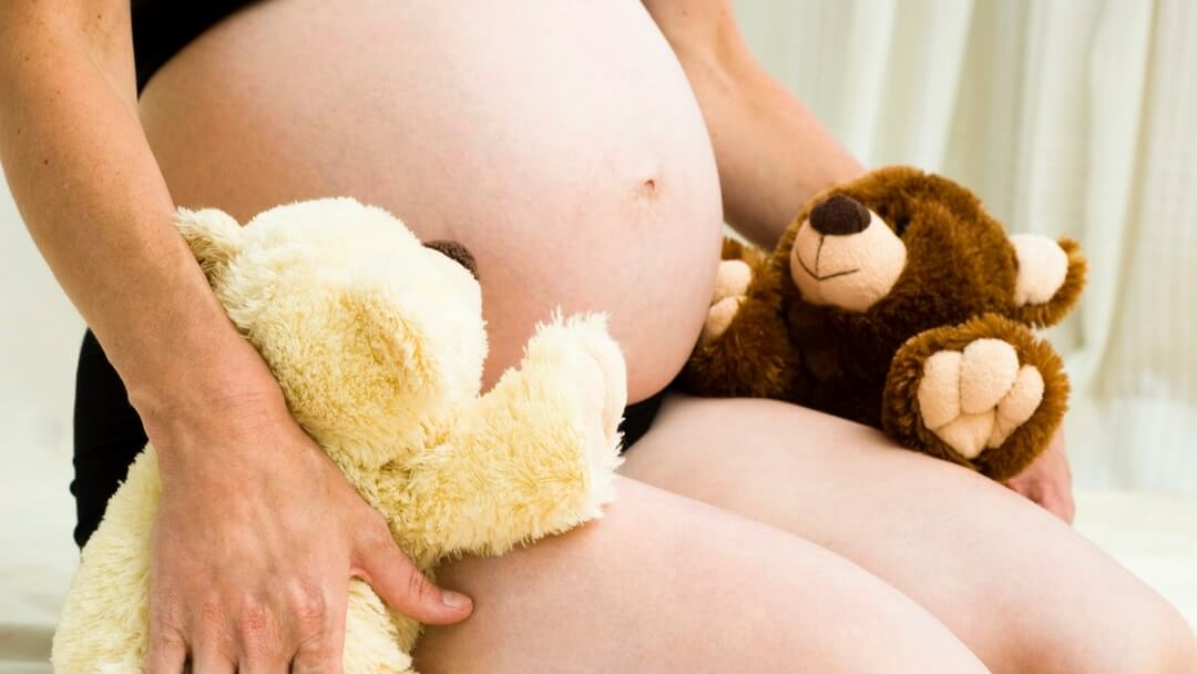 Twins Pregnancy - Woman Pregnant with Twins with Twin Bears - Twins & More