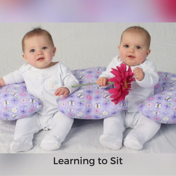 Twin Z Pillow Learning to sit