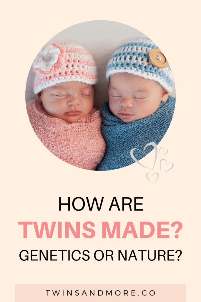 How are twins made? Genetics or nature. Twins & More